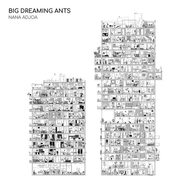 Nana Adjoa Big Dreaming Ants